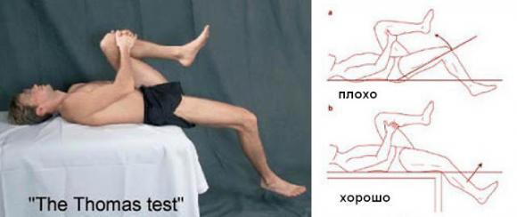 Диагностика состояния поясничной мышцы