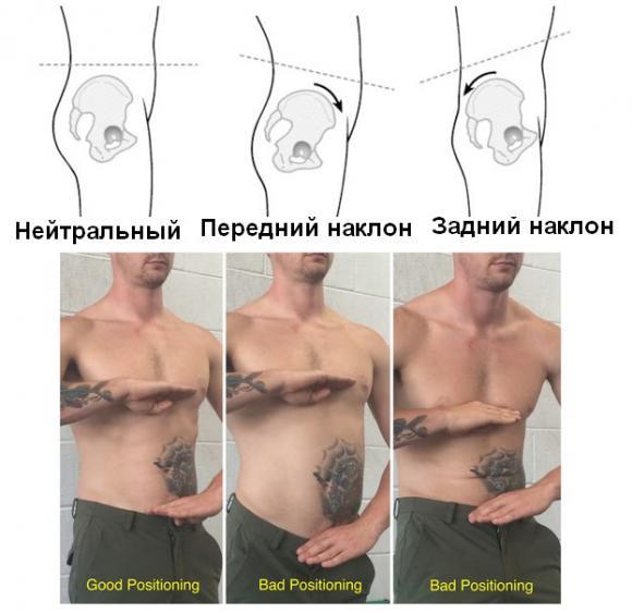 Большая поясничная мышца