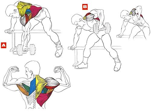 Упражнение штангой домашних условиях